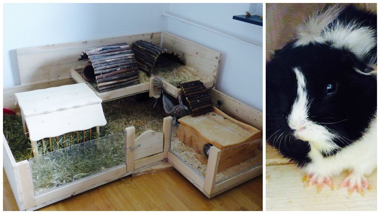 How to build your own wooden guinea pig cage doovi for Diy guinea pig hutch