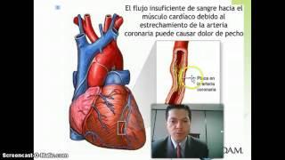 Coronaria wikipedia arteria enfermedad