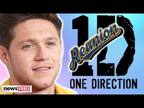 Niall Horan REVEALS One Direction Reunion Info!