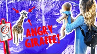 ANGRY GIRAFFE ALMOST EATS BABY OAKLEY