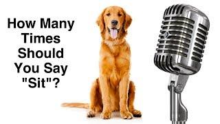 """Dog Training Basics - How Many Times Should You Say """"Sit""""? - Dog Training Podcast"""