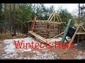 Wrapping up the Cabin Build as Winter Approaches (off grid cabin building #6)