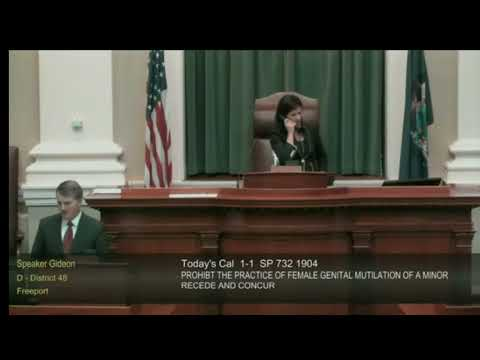Speaker Sara Gideon laughs as votes come in to kill anti-FGM bill