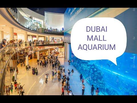 DUBAI MALL AQUARIUM NOW 2020 ( VIA METRO STATION) A QUICK VISIT