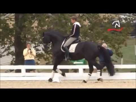 Edward Gal Totilas warm up WEG Kentucky 2010 - one tempis - Part 1