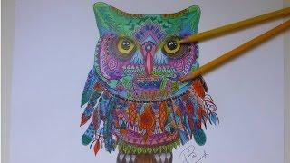 Dibujar Buho De Colores