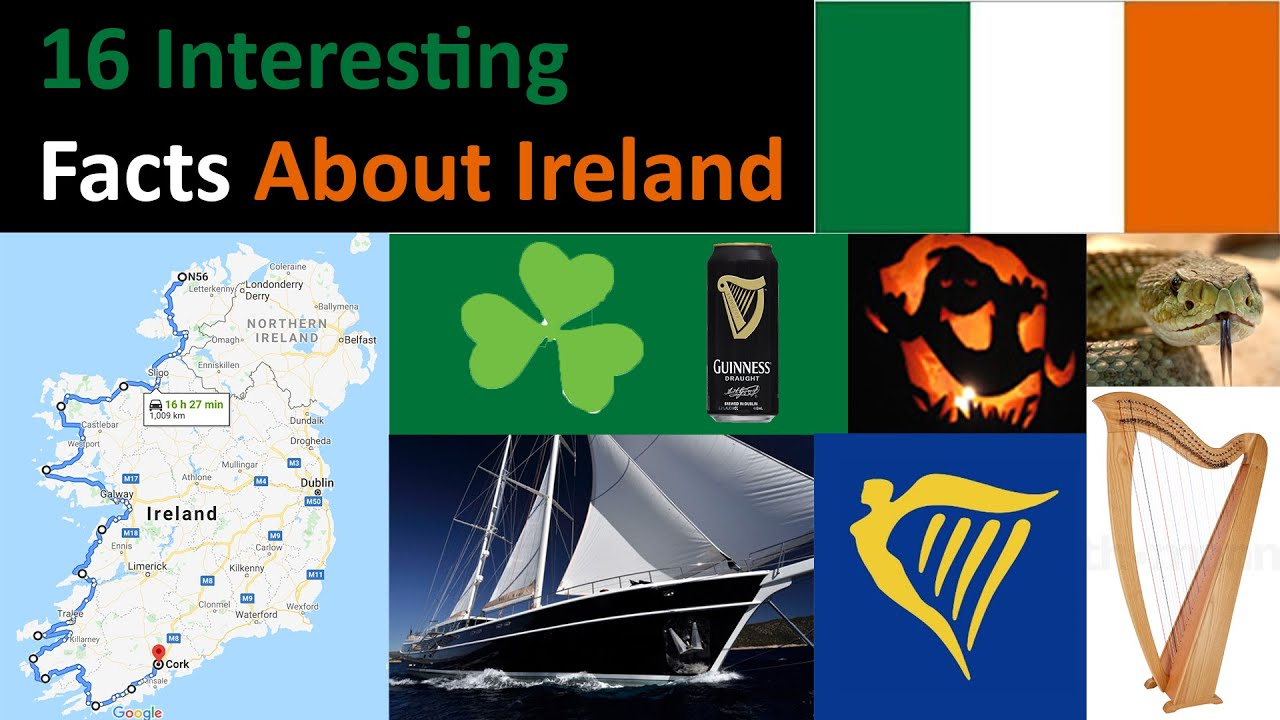 Gay Online Dating Ireland Personals - Vivastreet