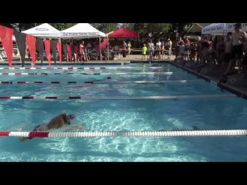Kenneth Chen 2017 游泳賽兩百碼四式混合接力賽