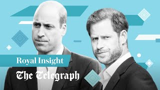 video: Watch: Why Princess Diana's statue unveiling may not be enough to heal Prince Harry and Prince William's rift