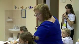 Урок русского языка, 4 класс, Дмитриева_И. А., 2017