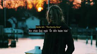 [Vietsub + Lyrics] Mr. Perfectly Fine (Taylor's Version) [From the Vault] - Taylor Swift