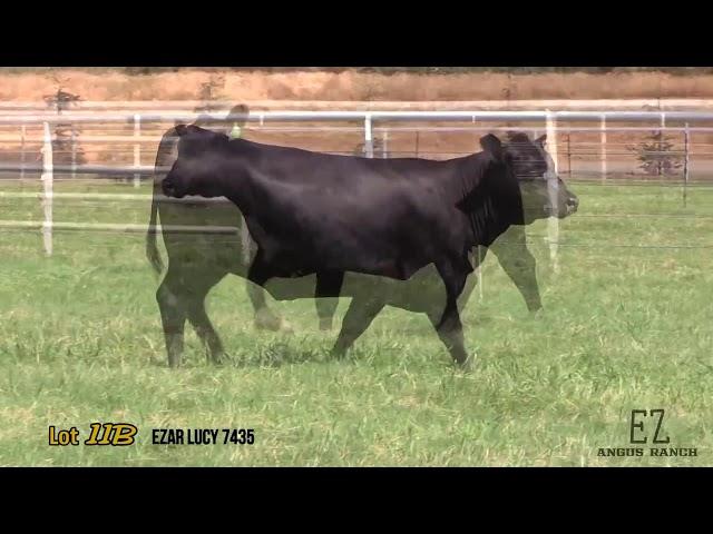 EZ Angus Ranch Lot 11B