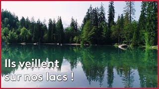 Haute-Savoie : nos lacs sont-ils menacés ?