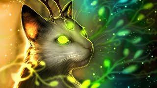 Коты воители/День Ночь