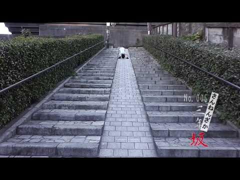 全力(ころがり)坂 【No.006 三年坂】