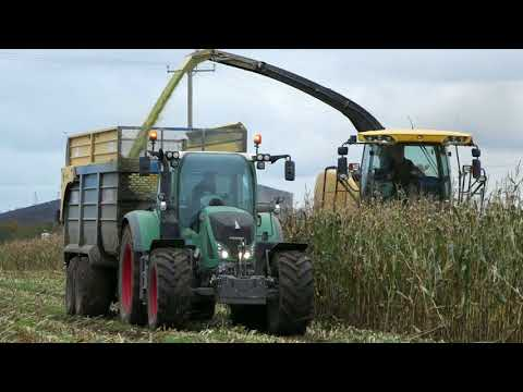 O'Brien Brothers 2017 - Maize