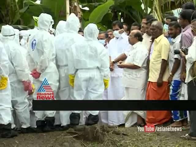 Avian flu under the control:squad dispatched പക്ഷിപ്പനി നിയന്ത്രണ വിധേയം