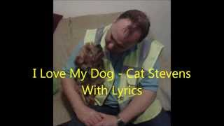 I Love My Dog - Cat Stevens  (with lyrics)