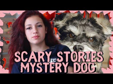 Danielle Bregoli Reacts to a Creepy Text Story