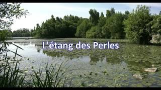 L'étang des Perles (HD)