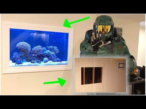 My In Wall Aquarium Start To Finish! DIY!