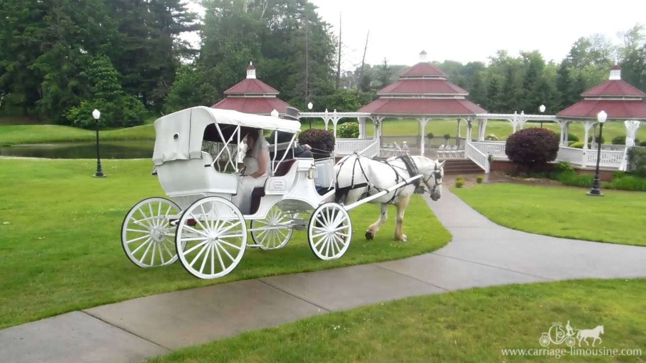 How to make a grand entrance to your wedding horse drawn for How to build a carriage