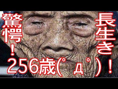 【長寿世界一256歳!?】長生きの秘訣は驚愕の食生活!