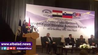 وزير الصناعة: 161 مليون يورو حجم التبادل التجاري بين مصر وسلوفينيا..صور