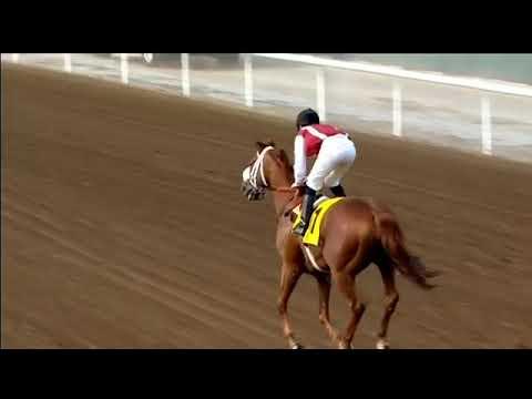 Jebel Ali 15/12/17 Race 1