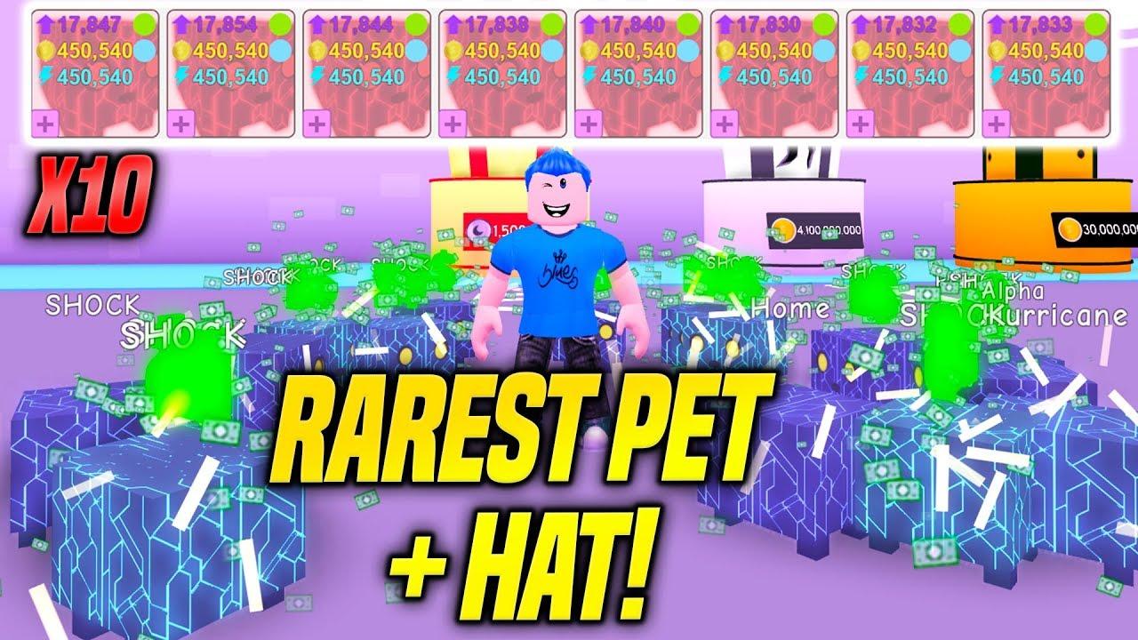 The Rarest Pet The Rarest Hat In Pet Simulator Is Insane Robux
