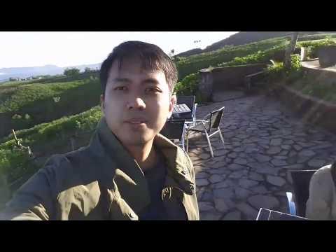 Indonesia Travel Hangout di Kebun Teh Highland Malino, Pesona Indonesia