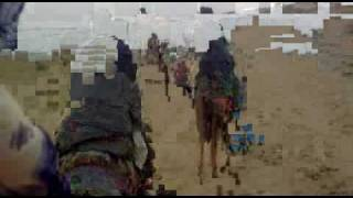Camel ride in Rajstan.wmv
