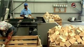 видео: Автоматзированная линия производства поддонов ЕВРО