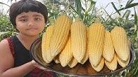 Deshi Food Channel - YouTube