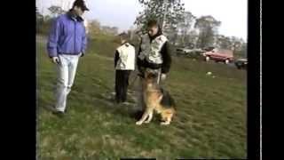 Brighton Dog Club Exercise Part1