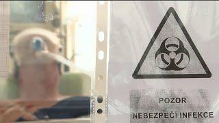 В мире число положительных тестов на коронавирус превысило 35 миллионов