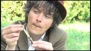 Eden Project: How To Make A Sycamore Whistle