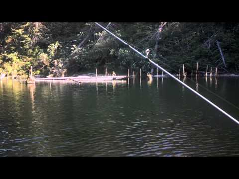 Trout Fishing A Hidden Lake In Oregon With The Family