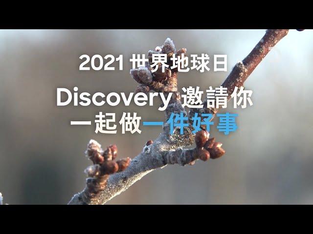 [2021世界地球日特輯] 看Discovery和動物星球,認識我們地球的困境!多樣愛地球節目連發,從大地、森林到動物