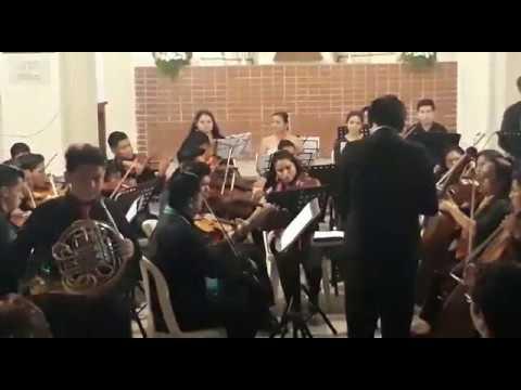 Horn Concerto - Nr.3 - W.A.Mozart KV.447 - I.Allegro