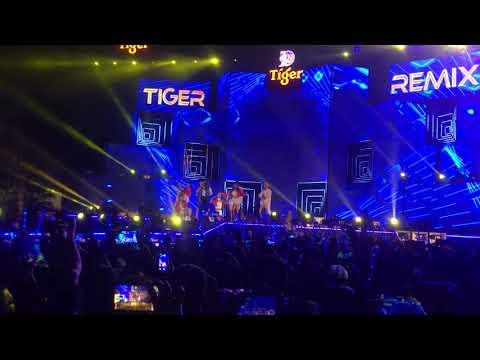 Sơn Tùng MTP - Tiger Remix 2018 - Hải Phòng