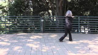 Tai Chi Long Form - 64 Movements
