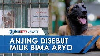 Anjing yang Serang ART hingga Tewas Disebut Milik Presenter Bima Aryo, 'Sparta' yang Banyak Fans