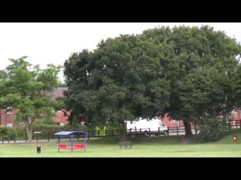 Parks Estate Project