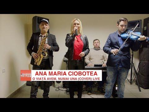 Ana Maria Ciobotea si Formatia Marian Negreanu - O viata avem, numai una (cover) 2018 LIVE