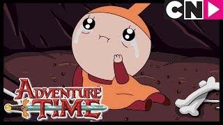 Adventure Time | Graybles 1000+ | Cartoon Network