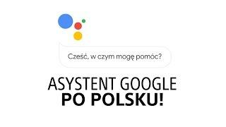 Asystent Google po polsku - co trzeba wiedzieć, jak go używać?