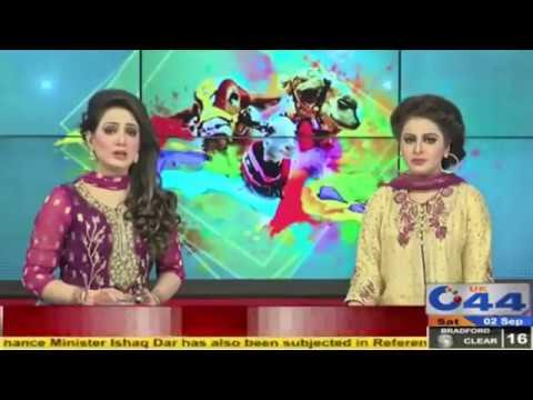 Qurbani in Sandband (Muzafarabad, Kashmir), dated 02.09.2017, News on C44 TV