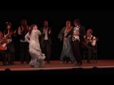 3e journée du festival Arte Flamenco : transmettre et perpétuer un art