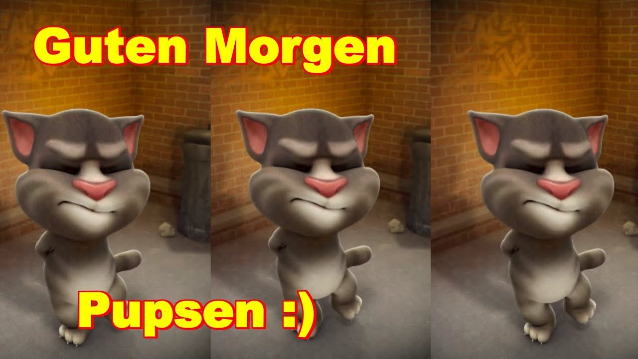 guten morgen und sch nen tag ich muss pupsen talking tom sprechende katze youtube. Black Bedroom Furniture Sets. Home Design Ideas